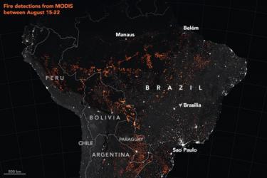 南米アマゾン森林火災記事まとめ