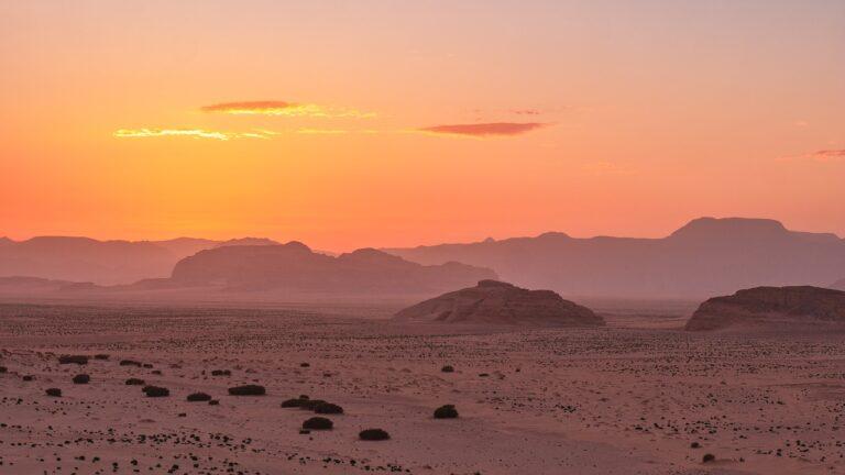 中東 砂漠
